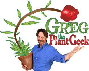 Plant Geek